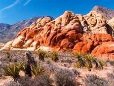 Индивидуальный тур в Kаньон Красных Скал (Red Rock Canyon) и на Ранчо Банни-Спрингс (Bonnie Springs Rancho) с русскоязычным гидом на комфортабельном внедорожнике от туроператора по США 'Космополитен Тревел'. Экскурсии в Лас-Вегасе, штат Невада.
