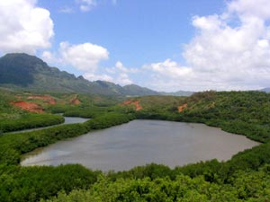 http://www.americaonline.ru/islands/hawaii/kauai-menehune-alekoko-fishpond.jpg
