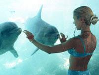 Шкарет (Xcaret) - Самый известный экологический парк Ривьеры Майя. Экскурсии в Канкуне и на Ривьера Майя.